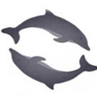 Dolphins are sold separately (shown in grey & black with white eye)